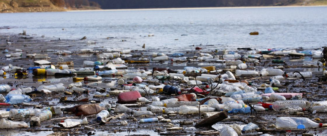 essay on pollution of marine life Read this essay to learn about plastic pollution after reading this essay you will learn about: 1  with marine life or sediment, plastic items sink to the.
